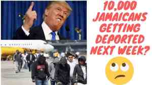 Donald Trump Is Deporting Thousands Of Jamaicans Next Week? Truth Or Gimmicks?