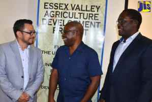 700 Farmers in Essex Valley to Benefit From Global GAP Training