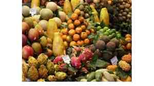 RADA Farmers' Market