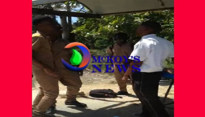 Green Island Students Viciously Attack Bus Driver