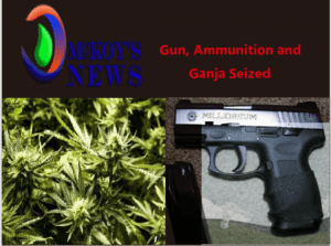 Police Seized Firearm and Ganja in Westmoreland