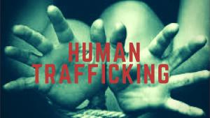 Human Trafficking Investigation