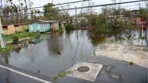 Hurricane Maria Death Toll