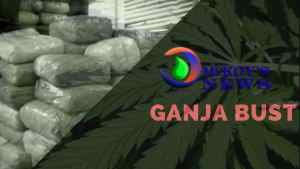 Ganja Seized at Donald Sangster Airport