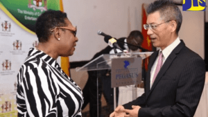 Investments by Chinese Companies at US$2 Billion