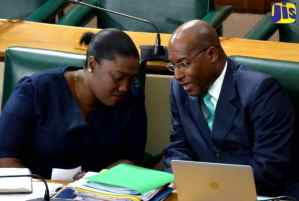 Jamaicans Encouraged to Create Safe Spaces for Children