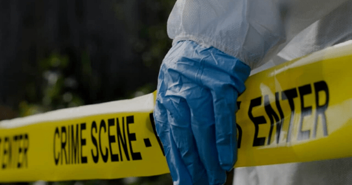 Neighbors Murdered in St Ann
