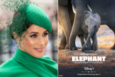 Meghan Markle becomes Disney star with new 'Elephant' trailer