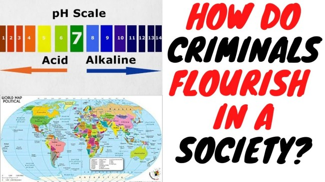 This Simple Concept Explains Why Some Societies Are Infested With Criminals And Others Are Not