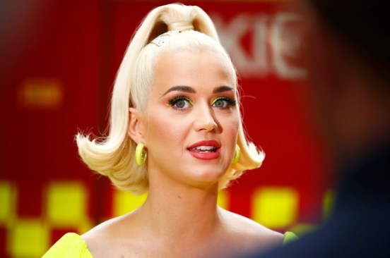 Katy Perry's beloved cat Kitty Purry dies