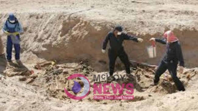 Police in Mexico Unearth 25 Bodies From Mass Grave