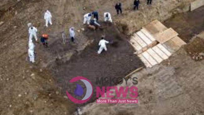 5 bodies dug up in Kingston