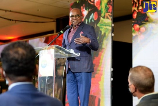 Gov't Looking To Establish Jamaica As Tourism Supply Hub