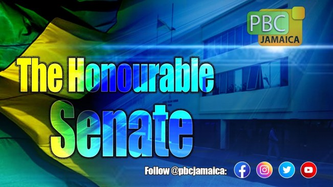 The Honourable Senate – February 12, 2021