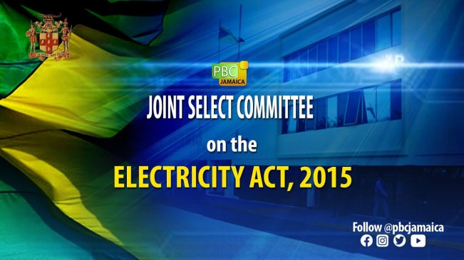 Joint Select Committee on The Electricity Act, 2015 – May 19, 2021