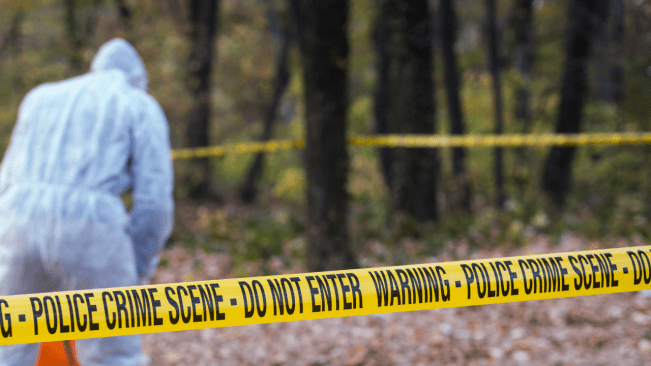 Decomposed Body Missing Community Member Found in Shallow Grave in St Catherine