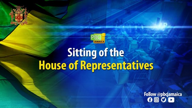 Sitting of the House of Representatives – July 6, 2021