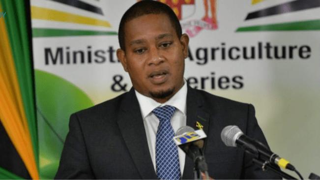Domestic Crop Production Up 20.3 Per Cent