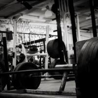 Lifting the Weight: On Grieving at the Gym