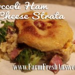 Broccoli Ham Cheese Strada