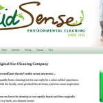 Screenshot of Maid Sense website