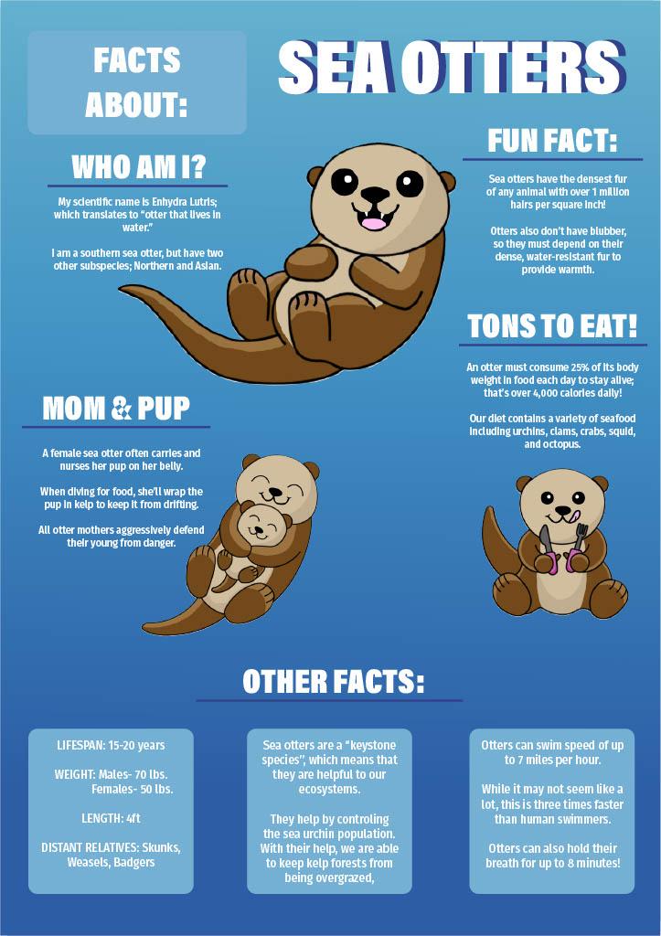 infographic doc11024_1