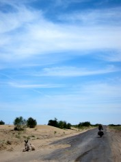 091 'Desert Acquaintances' - Uzbekistan