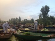 Dawn floating veg market