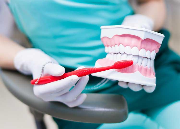 Oral health improvement steps