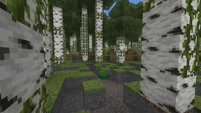 Expansive Biomes
