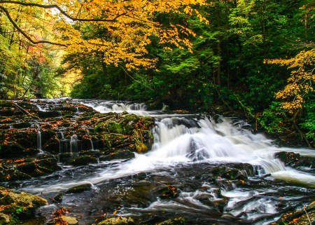 waterfall under autumn colors