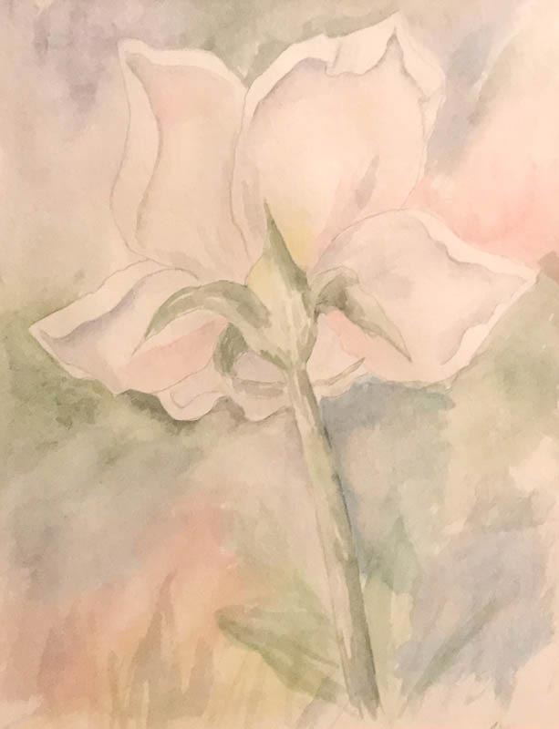 Flower Watercolor on paper