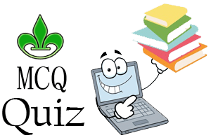Computer Fundamental MCQ Quiz