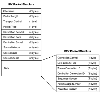 IPX SPX Protocol Structure