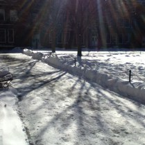 A snow-covered quad. Photo by Michelle DePinho.