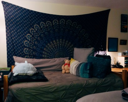 Jenn Ballingall's room in Lee Hall. Photo by Leah Cordova.