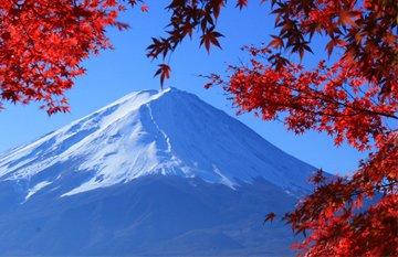 ทัวร์ญี่ปุ่น นาริตะ โตเกียว 5วัน 3คืน สายการบินแอร์เอเชียเอ๊กซ์