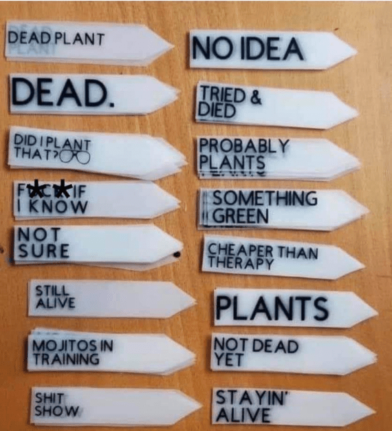Funny plant markers