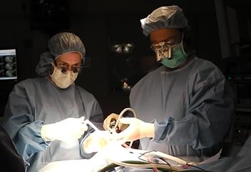 Neurosurgeon Doctors