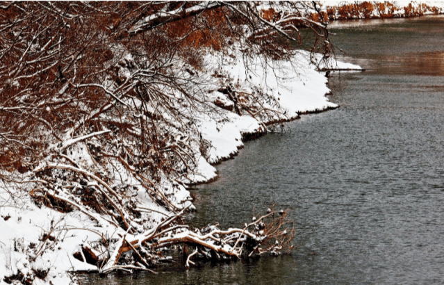 snowy river bank at Goat Island Preserve