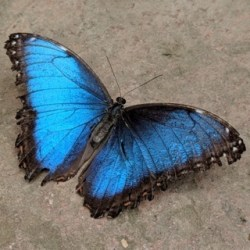 Boost Your confidence when you have the butterflies