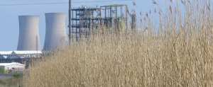 ICI management mixed wastewater reedbed systems