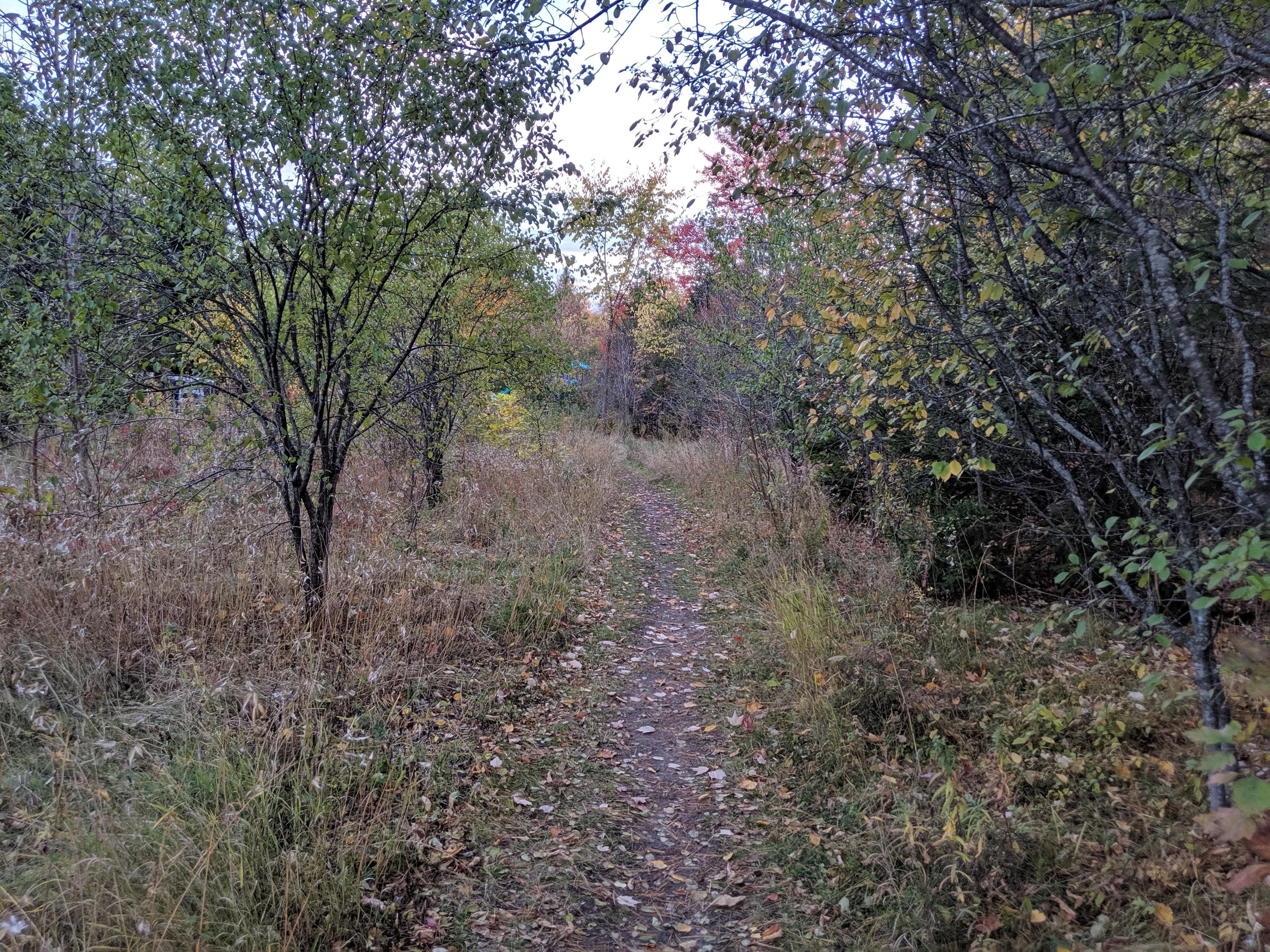 heron park walking trail
