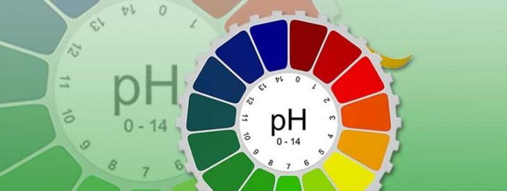The Importance of PH Balance in Your Body