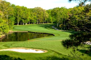 Image result for change in golf courses