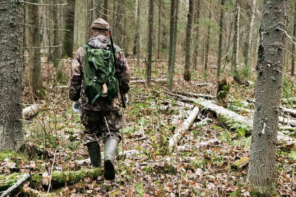 bushcraft skills for survival