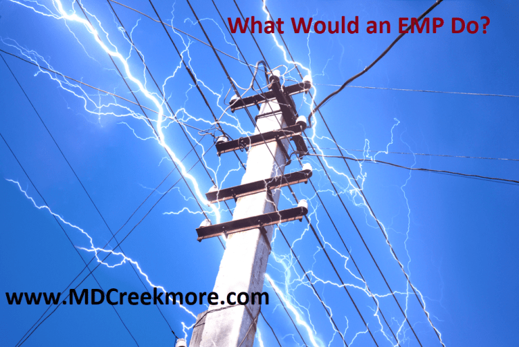 What Would an EMP Do
