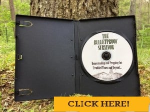 bulletproof-survivor cd