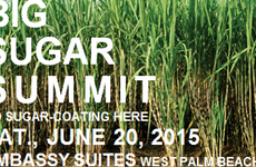 Big Sugar Summit this Saturday