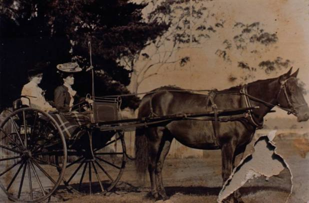 Elizabeth and Victoria Maud Mallon  photographed in their carriage at the Moruya Show in 1915